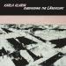 Karla Klarin: Subdivicing the LAndscape