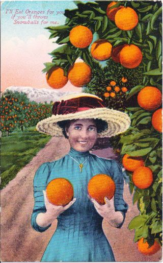 75371-12gd-5_Two_Large_Oranges 2